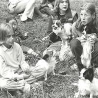 Barn med hundar.jpg