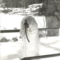 Den frosen pump vid kammen i Fisksätra Foto Kent Dahlin.jpg