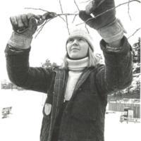 Fisksätra trädmästare som klipper 2.jpg