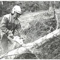 Fisksätras arbetskraft Det här man som saga något träd.jpg