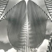 Arkitecta skulptura
